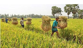 Preparation for introduction of new Agricultural Export Policy