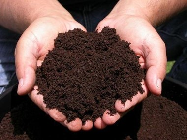 Make home organic organic manure
