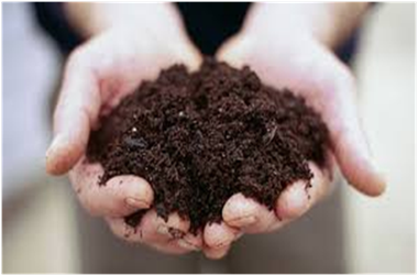 The option of toxic chemicals, methods and precautions for making the best quality compost