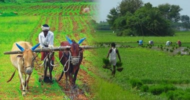 PDPS scheme is beneficial for farmers