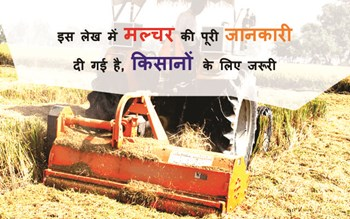 In this article, full details of Mallcher have been given, it is important for the farmers